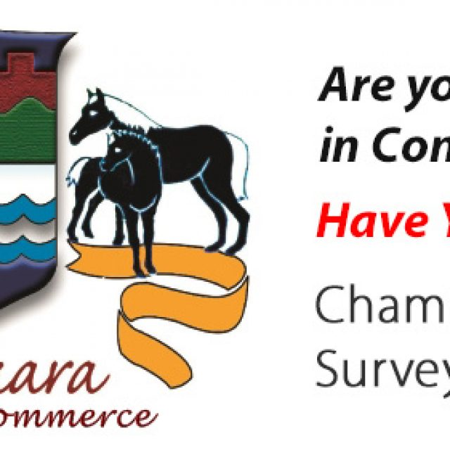 Chamber Perception Survey 2017- Now Underway!