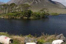 Tourism in Connemara