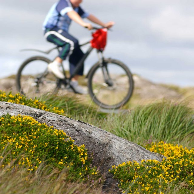Our Submission to Dept. on the Future Development of Greenways in Ireland
